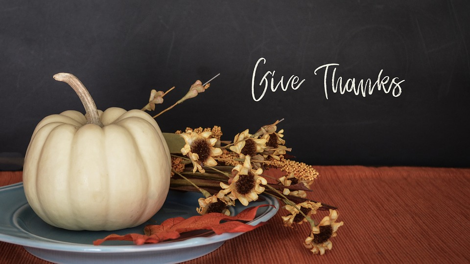 Thanksgiving Tips & Tricks